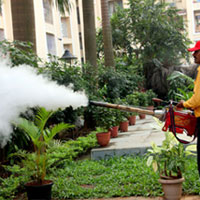 pest-control-solution-in-bhubaneswar
